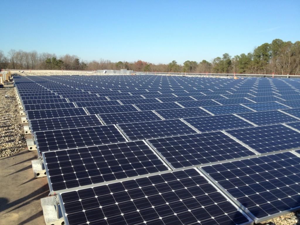 Fuguay-Varina-solar-farm_0325-1024x768