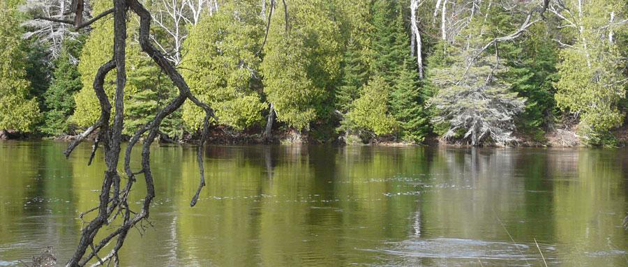Spring high water.