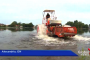 Simon Lake Community wants reprieve from Algae